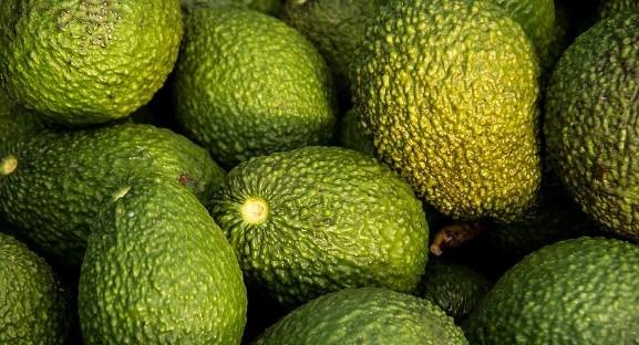 avocado feature